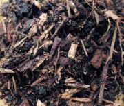 Contract Ornamental (Mulch) 50lt Landscaping Bark