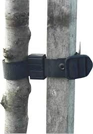 Rubber Buckle Tree Tie